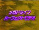 メガドライブ パーフェクトビデオ '92~'93 [1/2] GTV
