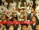 韓国の反日教育 独島はわが領土