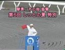 2013/08/25  隊長・その他協賛 第6回しっとの夏特別 (高知競馬3R)