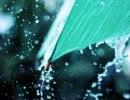 【自然音】傘と雨音