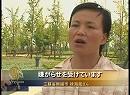 【新唐人】強制立ち退き背後にある地方債務問題