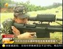 中國10式狙撃銃