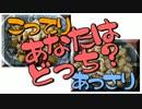 【こってり】秋のナス丼2種【あっさり】