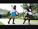 【市川×まりぽちゃ】ぺん誕で私の時間踊ってみた【おまけあり】 thumbnail