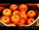 自家製酵母でりんごカスタードデニッシュ作ってみた