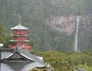 【聖地巡礼】熊野三山探訪録【八咫烏】