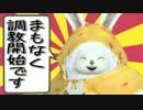 【PSO2】宇宙の泉防衛戦