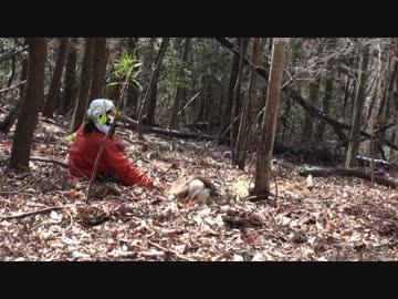 カメ五郎の狩猟生活(予告)