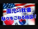 【園児の我儘】駄々をこねる韓国!