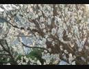 【巡音ルカ】Under the spreading plum tree