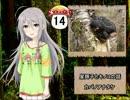 【モバマス】星輝子とキノコの話14 カバノアナタケ