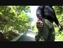 車載動画at沖縄。デンジャラス(危険)な出会い