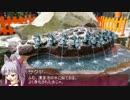 【そくドラ!外縁隊】神様と神社巡りしよう 15-1【箱根神社】