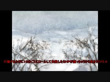 ゆるふわ系Cocリプレイ「雪山密室」前編