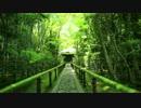 新緑の京都(2014/5/11)