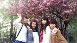北海道で 桜チラリ 踊ってみた