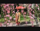 京都の写真集(ダイジェスト版)