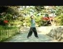 【踊ってみた】Calc.踊ってみた【大工けこちゃと日本三景】