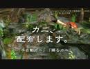 【MMD水産】カニ【モデル配布】