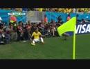 カメルーン vs ブラジル(韓国語実況)