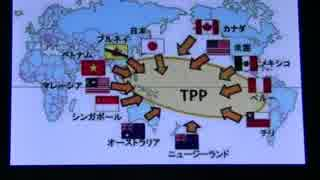 【移民とTPP】日本がアメリカのような銃社