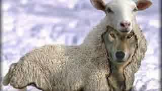 【GBO】Re:社畜の戦場49@羊蟹【字幕実況】 thumbnail