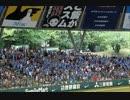 2014年6月28日 ライオンズ・クラシック 秋山選手応援歌