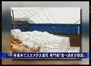 【新唐人】有毒米でスズメが大量死 専門家「食べ過ぎが原因」