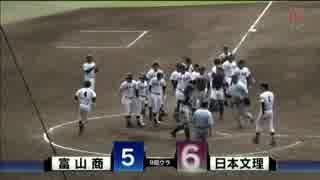 逆転サヨナラホームラン    新井充 【日本