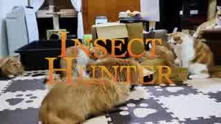 【マンチカンズ】昆虫ハンター猫