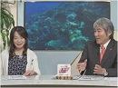 【予算】沖縄一括交付金と防衛費概算要求[