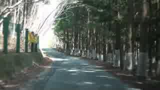 【車載動画】栃木県道めぐりシリーズ r245