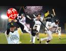 【東方野球】射命丸文のペナントレース【第17話 其ノ参】