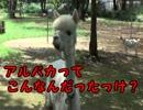 【旅動画】男二人きりで行く日本開拓旅行記Part.2【茨城編】