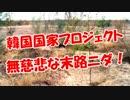【韓国国家プロジェクト】 無慈悲な末路ニダ!