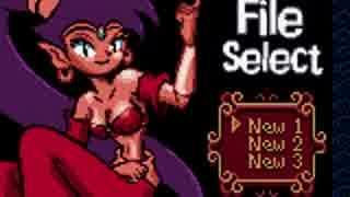 【TAS】シャンティ Shantae 1:05:26.0 日