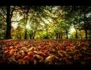 【作業用BGM】秋に聞きたい・切ない時に聞きたい楽曲集