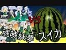 魂魄妖夢 VS スイカ 斬れぬものなど、あんまり無い!【東方MMD】