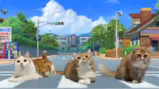 【マンチカンズ】猫が ようかい体操第一 踊ってみた