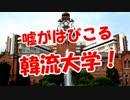 【嘘がはびこる】 韓流大学!