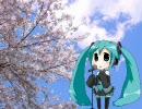 初音ミクが歌う。柏原芳恵の「春なのに」