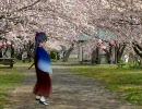 【サクラ大戦】 千早 「春が来る」/アイドルマスター