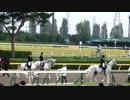 【競馬 de フィールライブ!】2014.10.5 第48回スプリンターズステークス