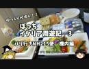 【ゆっくり】イタリア周遊記3 パリ行きNH215便 機内編