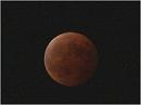 【皆既月食】たまには夜空を見上げてみよう[桜H26/10/9]