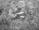 第二次世界大戦のドイツ狙撃手の教育動画