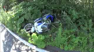 バイクですっころんだだけの動画