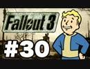 【Fallout3】危険なお散歩【実況】#30
