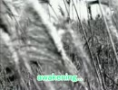 【音ゲーカラオケDB】awakening【オフボーカル】