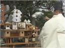 【国体】平成二十六年度 野分祭[桜H26/11/25]
